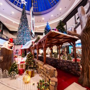 Location de décoration Noël et hiver