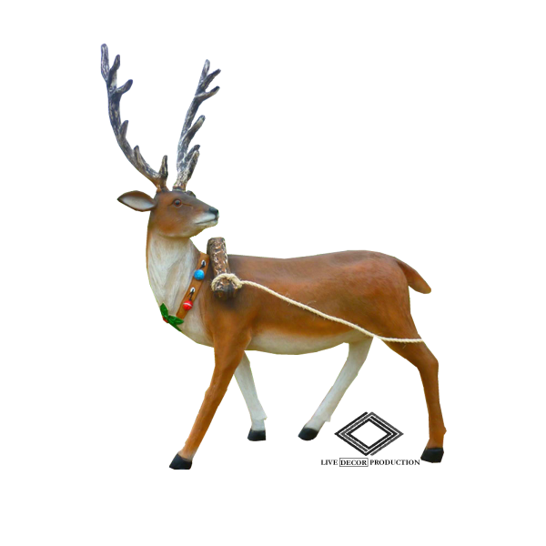 Location de rennes de Noël