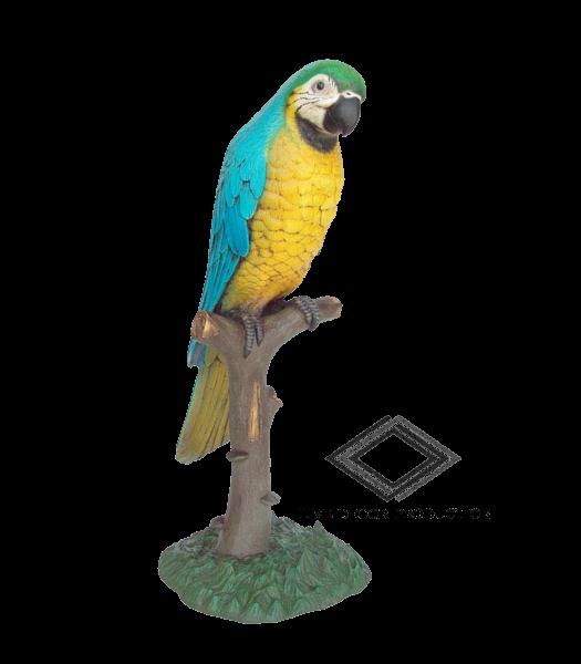 Location de perroquet sur tronc