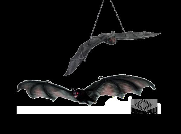 chauve-souris suspendue